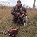 E-Dominic пойнтер на охоте с трофеем-min