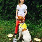 пойнтер Днепропетровск выставка собак 2015-min