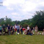 выставка собак в Днепроптровске-min