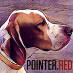pointer ukraine