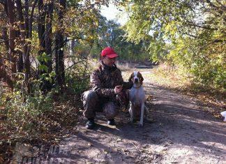 осень 2016 охота на дичь с собакой