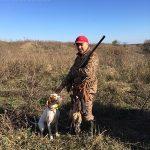 осенняя охота фазан 2016 английский пойнтер E-Alya