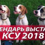 Календарь-выставок-КСУ-2018